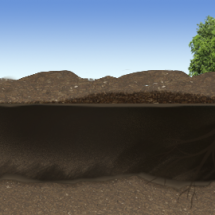 8 Benefits of Trenchless Sewer Line Repair Using CIPP in Indianapolis.